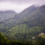 Panama Trip 5